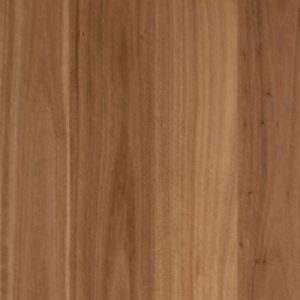 Embelton Floortech Timber Floors Engineered Architecural Collection BLACKBUTT
