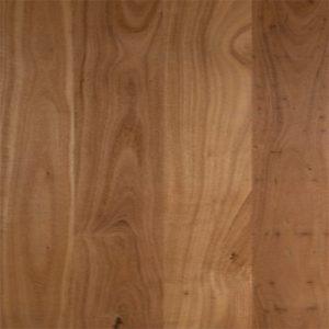 Embelton Floortech Timber Floors Timber Hardwood Plus BLACKBUTT GLOSS