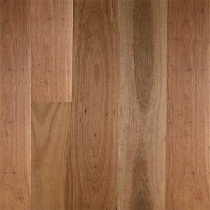 Embelton Floortech Timber Floors Timber Hardwood Plus BLACKBUTT MATTE BRUSHED