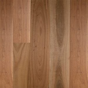 Embelton Floortech Timber Floors Timber Hardwood Plus BLACKBUTT WIDEBOARD MATTE BRUSHED