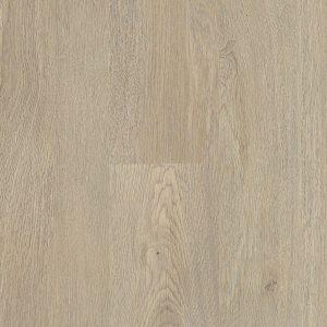 Rigid-Plank-Ivy