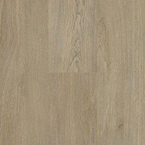 Rigid-Plank-Oxford